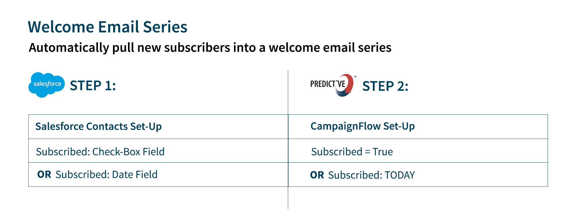 email segmentation based on new subscribers